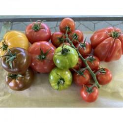 Assortiment de Tomates