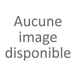 Kiwi jaune (France)